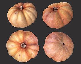 Pumpkin 2 3D model
