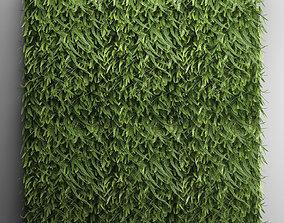 Vertical gardening Fern Wall 2 3D