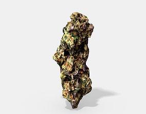 Marijuana Bud 3 - Photoscanned PBR 3D model