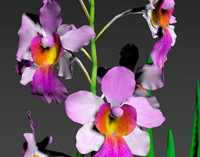 3D model Flower MissJoanquim