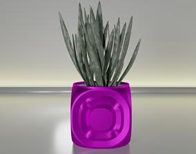 succulent plant pot 20 3D print model