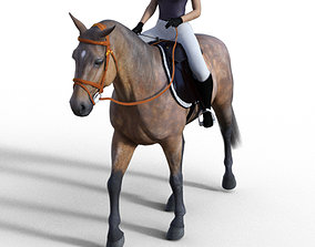3D model Horse and Rider