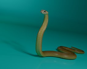 animated game-ready 3d model cobra snake