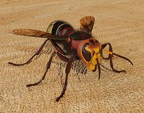 animated Realistic hornet rigged and animated for 3ds Max
