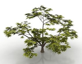 3D model hq tree