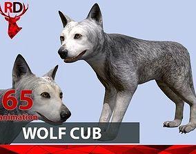 Wolf cub 3D model