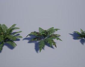 Realistic Tropical Fern 3D asset