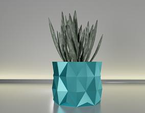 3D print model succulent plant pot 19