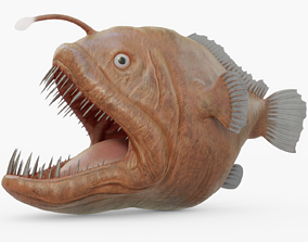3D asset VR / AR ready Angler Fish Rigged
