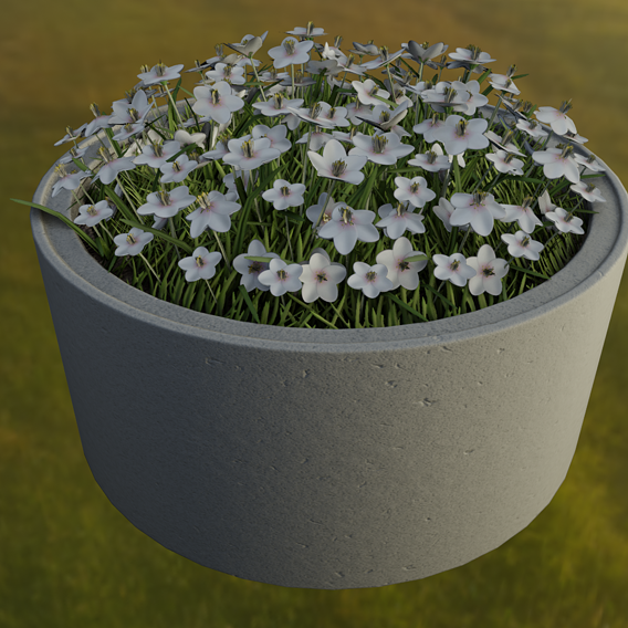 Concrete-Pipe-Pot-1500mm-with-White-Flowers-Version-2 (Blender-2.91 Eevee)