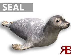 3D asset Seal animated