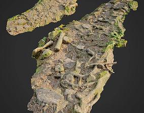 Ground stones C 3D model
