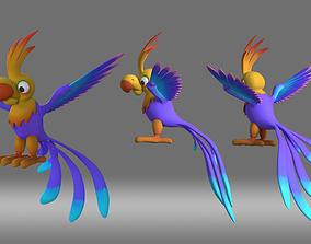 parrot bird animation role 3D model