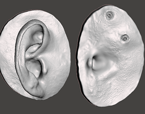 Natural human ear anatomy for 3D printable model 2
