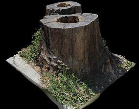 Trunk bark 3D