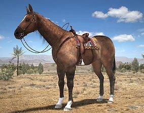 Cowboy Horse with saddle 3D model