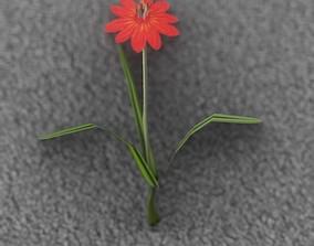 Red Flower - Verion 6 - Object 29 3D model