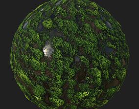 Mossy-Muddy Wetland Texture Set 3D asset