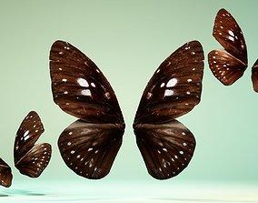 3D model Butterfly 8