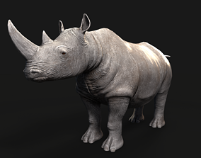 Rhino 3D asset realtime PBR