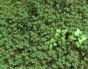 Clover Meadow Patch 3D model