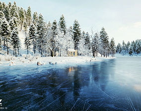 Cover 72H Cabin - SNOW Scene 3D model