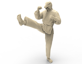 snake Front kick 3D printable model