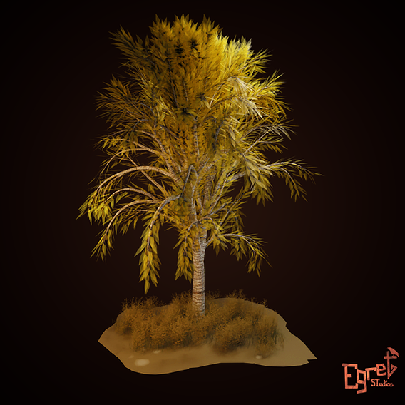 First Tree...