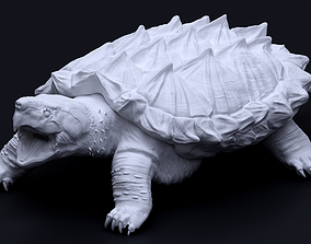 Alligator snapping turtle 3D print model
