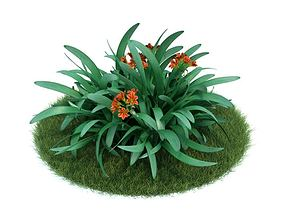 Green Plant With Orange Flowers 3D