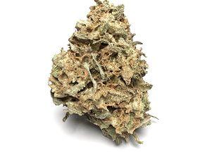 Cannabis Bud 03 3D model