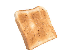 Photorealistic Toast 3D Scan