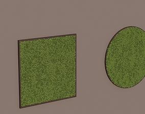 Framed moss collection 3D