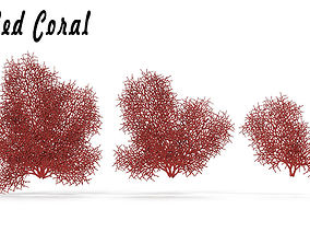 Red Coral 1 3D