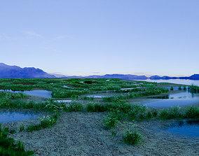 Wetland park landscape 01 3D