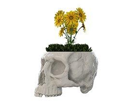 Skull Vase 3D print model