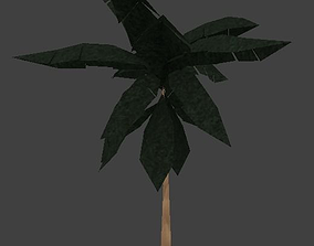 3D model Low Poly Palm Tree