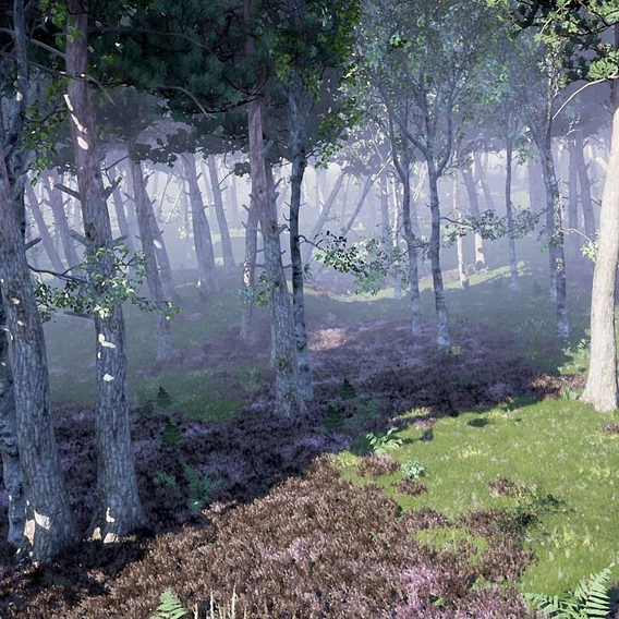 Concept forest