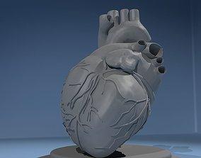 3D Heart science