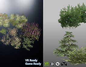 3D Grass Plant and Shrubs