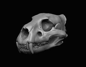 jaw Lion Skull 3D print