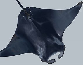 3D model Manta ray rigged and animated for Cinema 4d