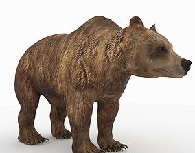 3D model Bear 5