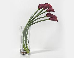 Calla lily 06 3D
