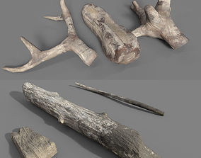 DriftWoods 3D model