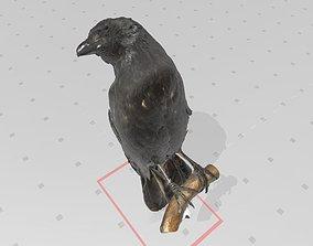 Real life Crow 3D print model