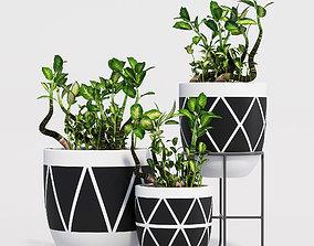 Designtwins pot 3D