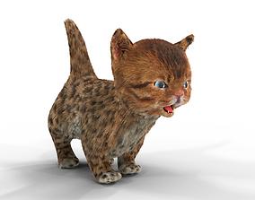 Cute kitten Fur Animated 02 3D asset