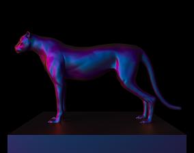 Cheetah 3D mammal