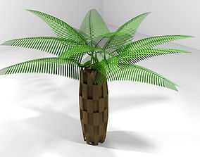 3D Palm Tree - Oil